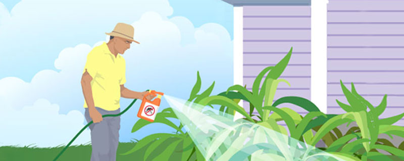 Illustration of a man spraying his yard with bug spray.