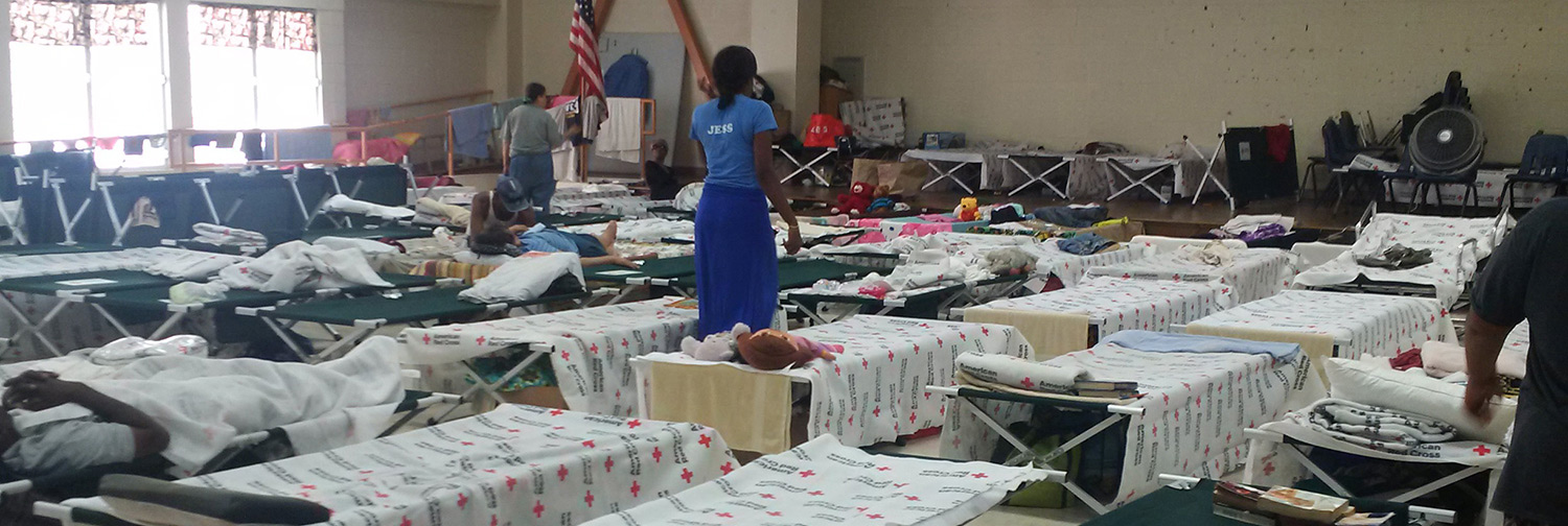 Bunk room for an emergency shelter set up during Hurricane Irma in 2017—Cots are set up in neat, organized rows with blankets and pillows laying on top. A few cots have individuals' personal items tucked neatly below.